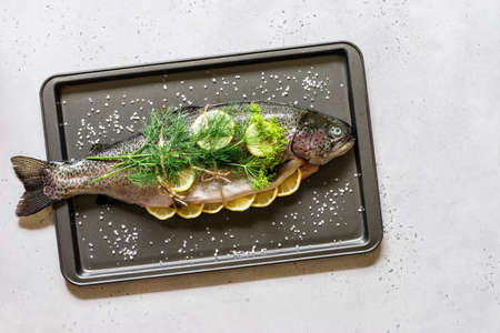Whole Raw Trout / Salmon with Lemon and Dill on the Baking Tray Prepared to Be Roasted, copy space for your text
