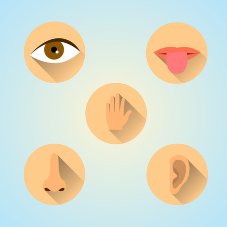 Five Senses Icon.Flat style design Çizim