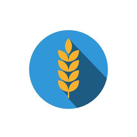 oats: gluten grain vector icon flat design.