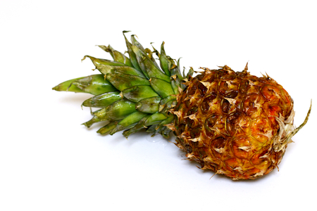 Pineapple isolated close-up shot with white background.