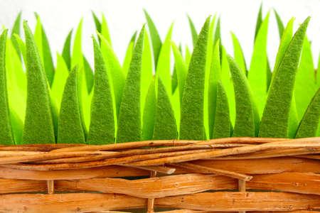 ornamental grass in a basket