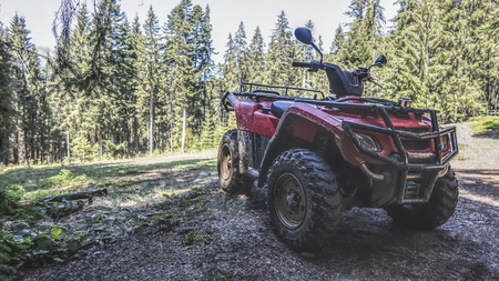red quad bike in the forest, side and front view Imagens