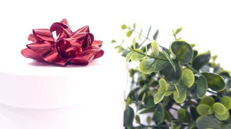 White gift box with red bow on a background of green leaves, St. Valentine's Day, International Women's Day, birthday, holiday concept, mock up, copy space Archivio Fotografico