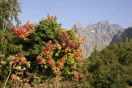 Different colors of autumn in the mountains of the Caucasus photo