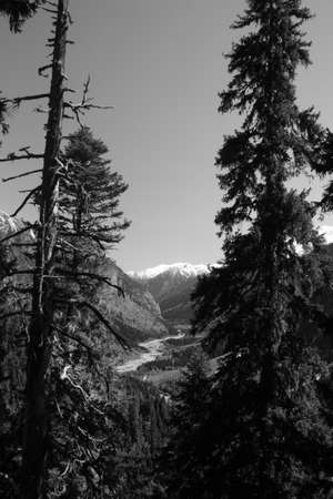 The white tops of the mountains in summer, black and white and grayscale images. Stock Photo - 11560668