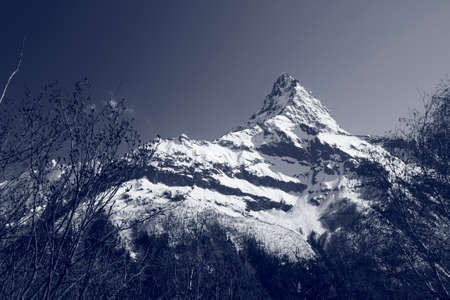 The white tops of the mountains in summer, black and white and grayscale images. Stock Photo - 11560671
