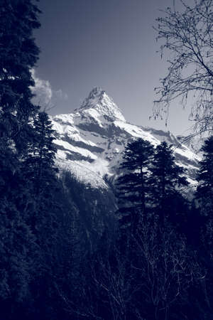 The white tops of the mountains in summer, black and white and grayscale images. Stock Photo - 11560665