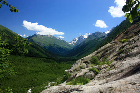 alpine zone: Summer in the mountains, the summer season in the alpine zone