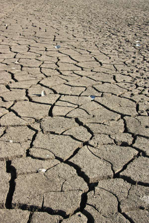 Dry earth, mud, cracked earth, the bottom of the reservoir Stock Photo - 12626557