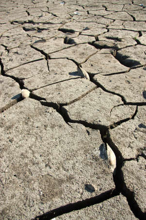 Dry earth, mud, cracked earth, the bottom of the reservoir Stock Photo - 12626570