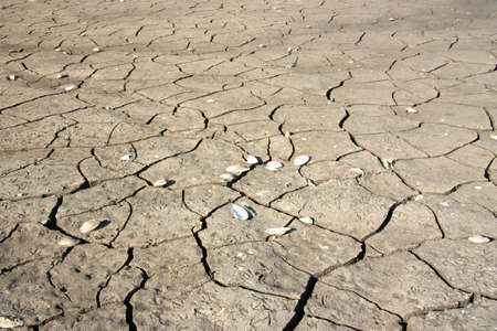 Dry earth, mud, cracked earth, the bottom of the reservoir Stock Photo - 12626565