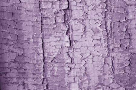 Large cracks texture purple paint on wood photo