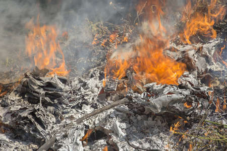 norms: Illegal burning of waste in violation of environmental norms