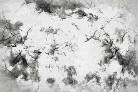 Abstract design of white with a black cloud with lines like veins photo