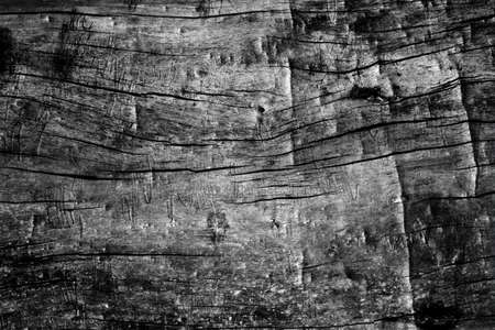 black and white wall wood texture background Archivio Fotografico