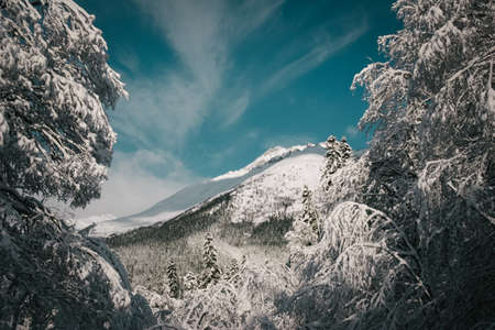 ski slopes: Winter mountains panorama with ski slopes. Caucasus