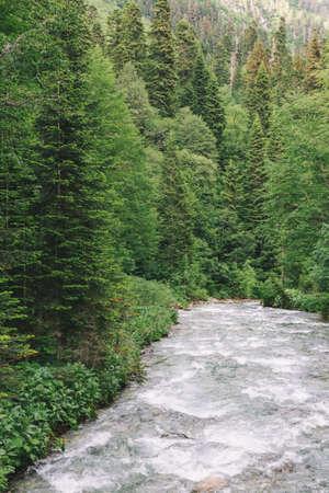 Mountains river and coniferous Forest landscape Travel wild nature Landscape Travel scenery summer green. Archivio Fotografico