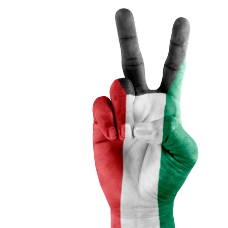Kuwait flag on successful hand on white background. photo