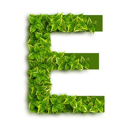 Letter E, alphabet of green leaves isolated on white background. Stock Photo