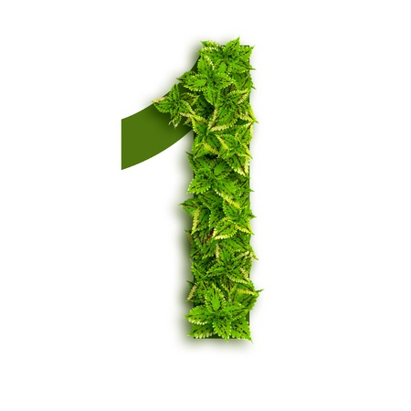 Number1, alphabet of green leaves isolated on white background. Stock Photo
