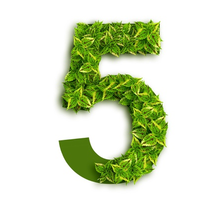 Number 5, alphabet of green leaves isolated on white background.