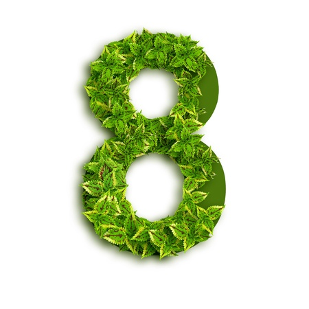 Number 8, alphabet of green leaves isolated on white background.  Stock Photo