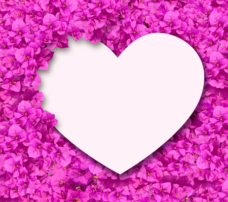 White heart card on bougainvillea flowers background. photo