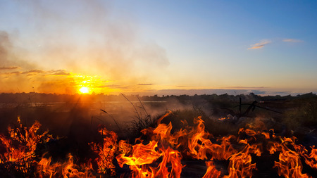 fire burning dry grass and sunset in the evening. Stock Photo