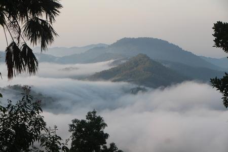 Mist sea 写真素材