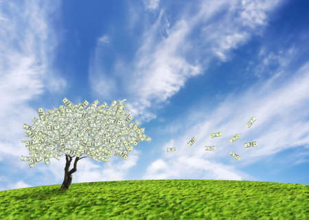 Concept of a cash tree of American dollar banknotes with leaves falling of detoning banking and savings. photo