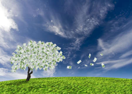 cash flow: Concept of a cash tree with falling 100 Euro banknotes leaves.Composite shot. Stock Photo