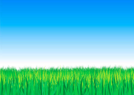 Grassy background Stock Vector - 9936936