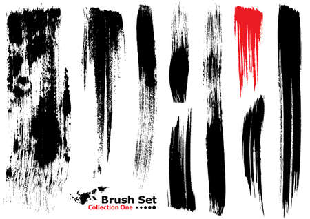 Collection of highly detailed vector illustration brushes - set 1 Vector