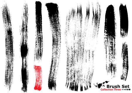 Collection of highly detailed vector illustration brushes - set 3