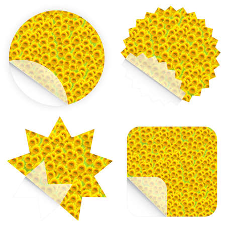 clean off: Illustration of beautiful sunflower retail stickers. Blank and isolated. Stock Photo