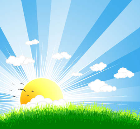 sunlight sky: Vector illustration of an idyllic sunny nature background with a blue gradient stripes sky, birds, green grass layers of grass and  sky.