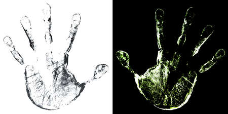 Vector illustration of a highly detailed hand print trace in two color variations. Aged skin look.