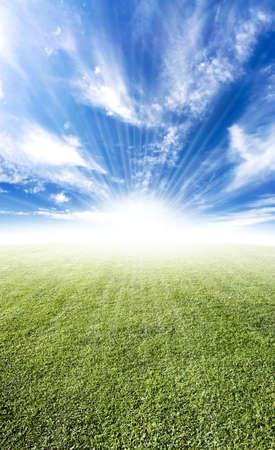 Beautiful sun flare horizon over land meadow photo with bright future concept. Standard-Bild