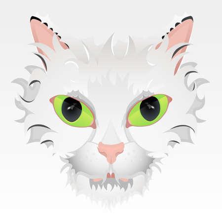 whisker characters: Ilustraci�n vectorial de un gato linda cara con grandes ojos verdes y cabello estilizado. Altamente detallado. Vectores