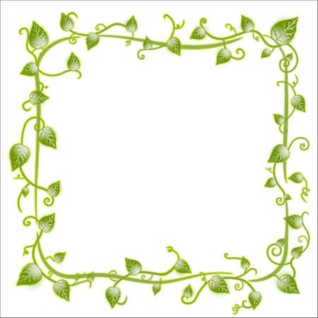 illustration of a vintage floral leaf frame with modern curls and vines.