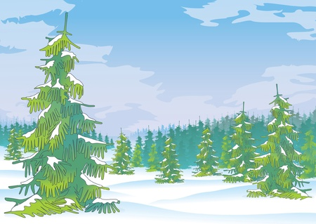 winter forest, vector Stock Vector - 15984452