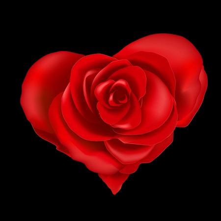 Red roses in heart shape, isolated on a black background, vector