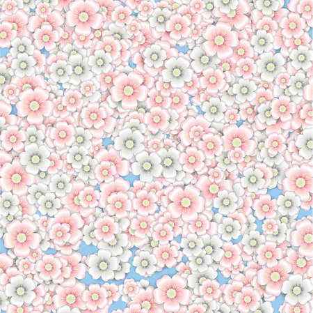 Background of pink and white cherry blossoms