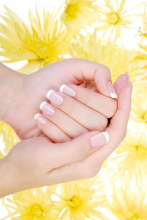 Wellbeing human hand with beauty manicure. Yellow camomile flower on a background. photo