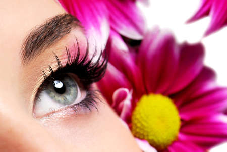 Fashion make-up of a beauty woman eye. Purple flower on background.