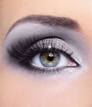 mascara: Glamour make-up of woman eye with grey eyeshadows Stock Photo
