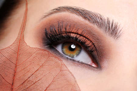 woman eyeball: Female eye with brown bright make-up and leaf at face  Stock Photo
