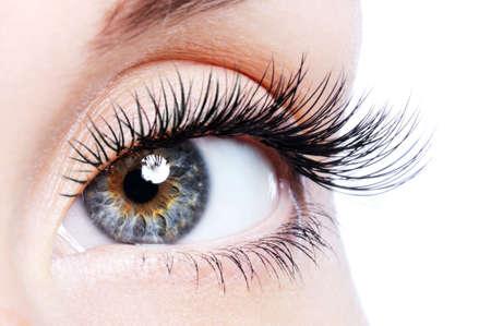 long eyelashes: Beauty female eye with curl long false eyelashes - macro shot over white background