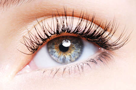 Woman eye with a curl false eyelashes - low angle view Stock Photo - 5859098