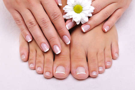 Skincare of a beauty female feet with camomiles flower photo